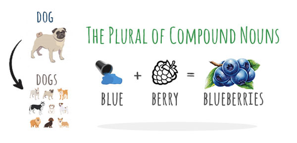 Plural of Compound Nouns With Examples